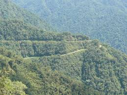 Putumayo is also home to some of the thickest coca fields in the world.